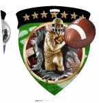 Full Color Burst Medal Football Trophy Awards