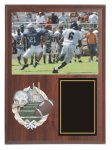 Picture Plaque with Resin Plaque Mount Award  Plaque Award